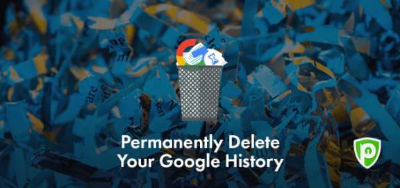 how to permanently delete web history
