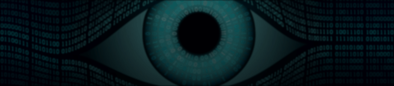 5 Eyes Alliance