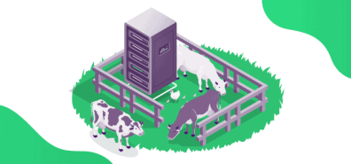 Servers as Cattle, Not Pets